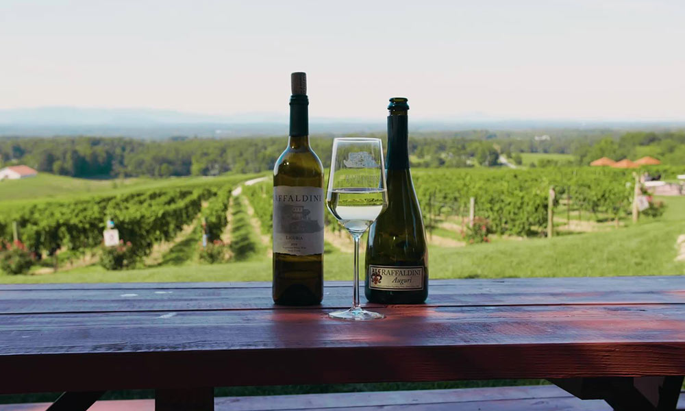 Wine bottle and glasses overlooking the vineyards at Raffaldini WInery