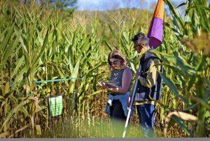 2021 Rural Hill Amazing Maize Race (Sept. 11-Nov. 7) @ Historic Rural Hill