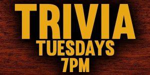 Thinkin & Drinkin Trivia Night @ On Tap Crafty Brews